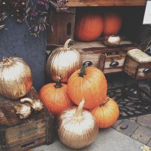 pumpkins-how-do-you-decorate-yours-L-N0xPRP