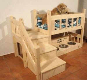 adorable-dog-home