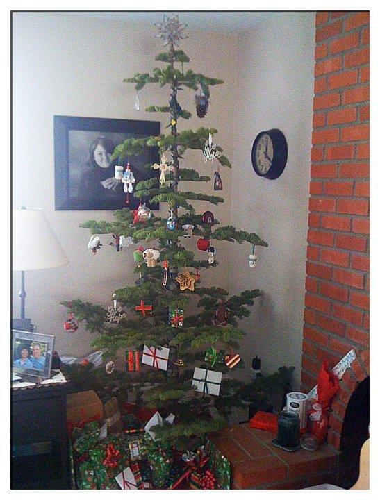 Ugly-Christmas-Tree-8