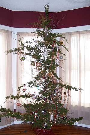 cheap-christmas-tree-2